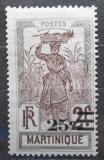 Poštovní známka Martinik 1924 Žena s ananasem přetisk Mi# 107