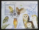 Poštovní známka Komory 2009 Výreček Mi# 2429 Block Kat 15€