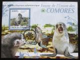 Poštovní známka Komory 2009 Tuleni Mi# Block 528 Kat 15€