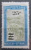 Poštovní známka Madagaskar 1924 Místní krajina přetisk Mi# 169