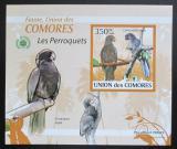 Poštovní známka Komory 2009 Papoušci DELUXE neperf. Mi# 2390 B Block