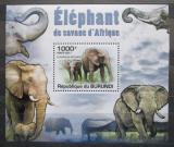 Poštovní známka Burundi 2011 Sloni DELUXE Mi# 2030 Block