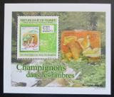 Poštovní známka Guinea 2009 Houby na známkách DELUXE Mi# 7025 Block