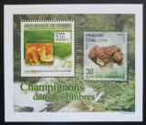 Poštovní známka Guinea 2009 Houby na známkách DELUXE Mi# 7026 Block