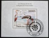Poštovní známka Komory 2009 Ptáci Mi# Block 575 Kat 15€