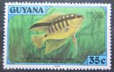 Poštovní známka Guyana 1980 Kančík šikmopruhý Mi# 589