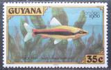 Poštovní známka Guyana 1980 Drobnoústka pruhovaná Mi# 584