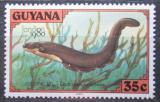 Poštovní známka Guyana 1980 Paúhoř elektrický Mi# 582