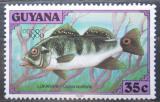 Poštovní známka Guyana 1980 Cichlida ocasooká Mi# 591