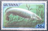 Poštovní známka Guyana 1980 Arapaima velká Mi# 590