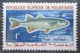 Poštovní známka Mauritánie 1964 Cípal hlavatý Mi# 236