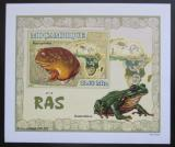 Poštovní známka Mosambik 2007 Žáby DELUXE neperf. Mi# 2962 B Block