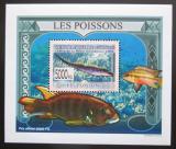 Poštovní známka Guinea 2009 Ryby DELUXE Mi# 6376 Block
