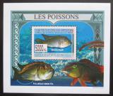 Poštovní známka Guinea 2009 Ryby DELUXE Mi# 6378 Block
