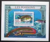 Poštovní známka Guinea 2009 Ryby DELUXE Mi# 6380 Block