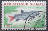 Poštovní známka Mali 1976 Alestes macrolepidotus Mi# 546