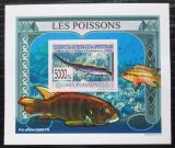 Poštovní známka Guinea 2009 Ryby DELUXE neperf. Mi# 6376 B Block