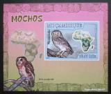 Poštovní známka Mosambik 2007 Sovy DELUXE neperf. Mi# 3020 B Block