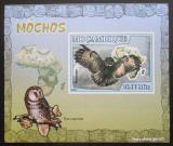 Poštovní známka Mosambik 2007 Sovy DELUXE neperf. Mi# 3021 B Block