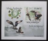 Poštovní známka Mosambik 2010 Dravci DELUXE neperf. Mi# 3502 B Block