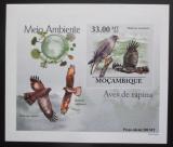Poštovní známka Mosambik 2010 Dravci DELUXE neperf. Mi# 3503 B Block
