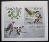 Poštovní známka Mosambik 2010 Dravci DELUXE neperf. Mi# 3506 B Block