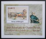 Poštovní známka Mosambik 2009 Dinosauři DELUXE Mi# 3435 Block