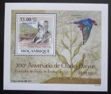 Poštovní známka Mosambik 2009 Dinosauři DELUXE Mi# 3436 Block