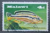 Poštovní známka Malawi 1967 Tlamovec pestrý Mi# 68