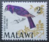 Poštovní známka Malawi 1968 Leskoptev bělobřichá Mi# 93