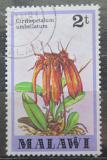 Poštovní známka Malawi 1979 Cirrhopetalum umbellatum Mi# 306