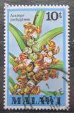 Poštovní známka Malawi 1979 Acampe pachyglossa Mi# 310
