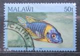 Poštovní známka Malawi 1984 Aulonacara Mi# 419 I