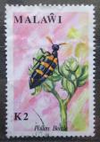 Poštovní známka Malawi 1991 Mylabris amplectens Mi# 576 Kat 11€
