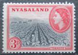 Poštovní známka Ňasko, Malawi 1953 Tabáková plantáž Mi# 104