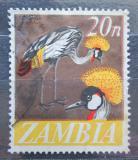 Poštovní známka Zambie 1968 Jeřáb paví Mi# 46