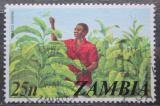 Poštovní známka Zambie 1975 Sklizeň tabáku Mi# 151