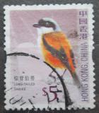 Poštovní známka Hongkong 2006 Ťuhýk královský Mi# 1398 A
