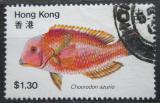 Poštovní známka Hongkong 1981 Choerodon azurio Mi# 370