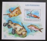 Poštovní známka Burundi 2013 Ryby neperf. Mi# Block 368 B