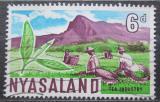 Poštovní známka Ňasko, Malawi 1964 Sběr čaje Mi# 130