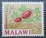 Poštovní známka Ňasko, Malawi 1964 Podzemnice olejná Mi# 128