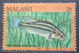 Poštovní známka Malawi 1984 Tlamovec Mi# 410 I