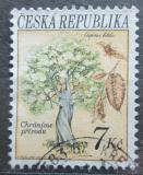 Poštovní známka Česká republika 1993 Habr obecný Mi# 24