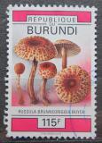 Poštovní známka Burundi 1993 Houby Mi# 1779