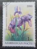 Poštovní známka Azerbajdžán 1993 Iris elegantissima Mi# 93
