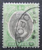 Poštovní známka Jižní Nigérie 1904 Král Edward VII. Mi# 21