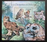 Poštovní známka Komory 2011 Sovy Mi# Block 629 Kat 13€