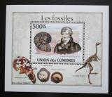 Poštovní známka Komory 2010 Fosílie DELUXE Mi# 2642 Block