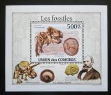 Poštovní známka Komory 2010 Fosílie DELUXE Mi# 2643 Block